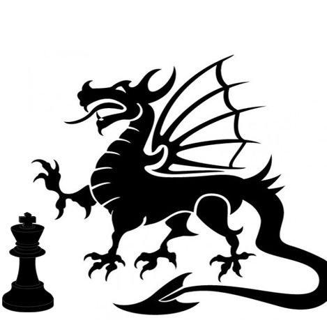 ChessDragon photo