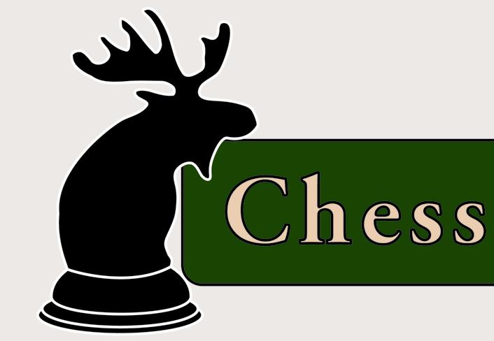 ChessMaine photo